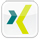 xing icon small
